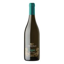 TORREVILLA La Genisia Cortesio Noir Pinot Nero 2013